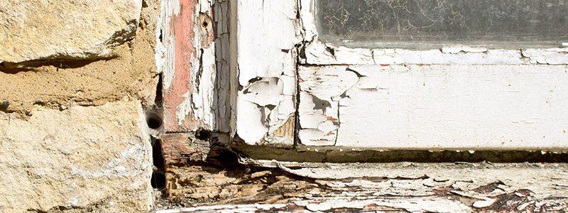 La manutenzione dei serramenti in legno durante l'anno